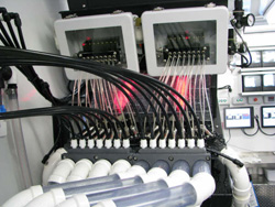 Oswego NY Net Pens